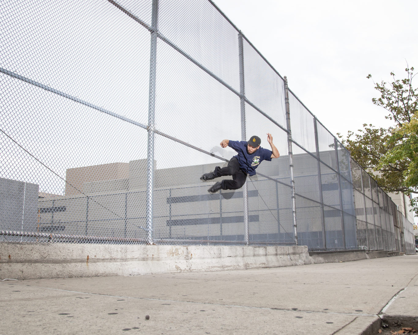 08_22_16_GREG_PRESTON_FENCE_BONK