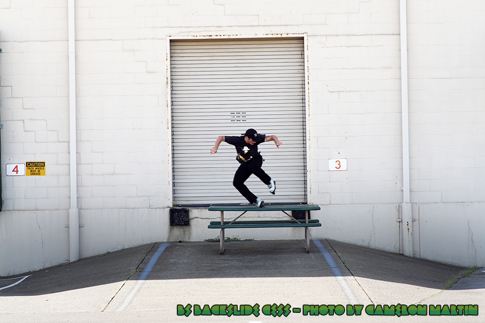 TAYLOR_POPHAM_BS_BACKSLIDE_CESS_PHOTO_BY_CAMERON_MARTIN