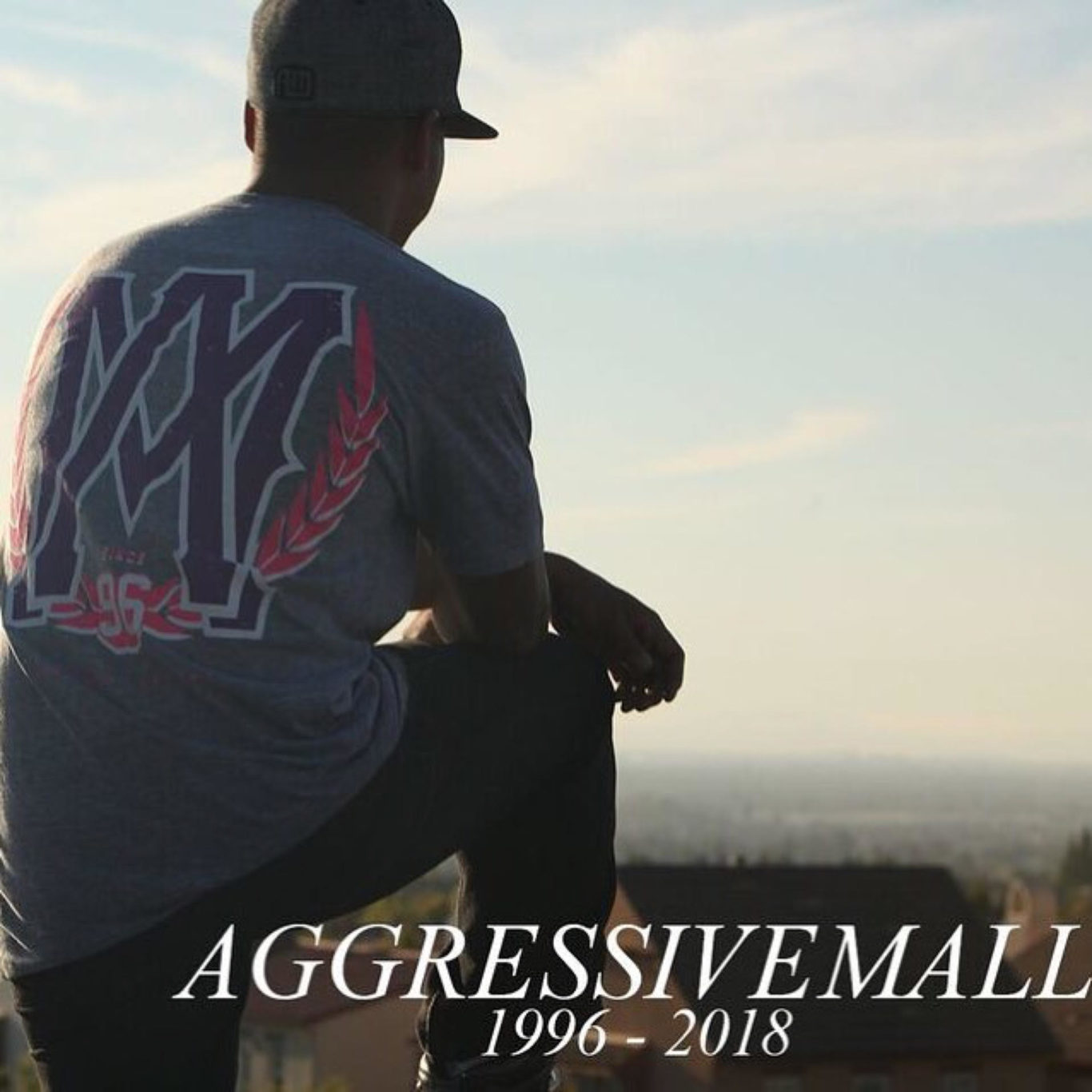 Aggressive Skating Forum Discussions about any topic related to vert skating, skatepark tricks, aggressive street skating, action sports events, and the aggressive skating lifestyle.